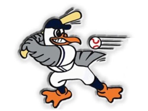 Gull Baseball | Admiral Sims House Bed & Breakfast, Newport RI
