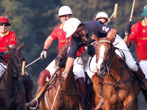 Mens playing polo | ADMIRAL SIMS B&B, Newport Rhode Island