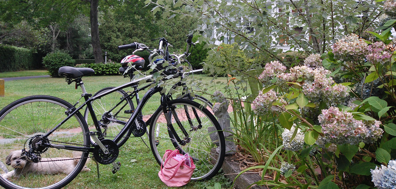 2 Bikes and Flowers | ADMIRAL SIMS B&B, Newport Rhode Island